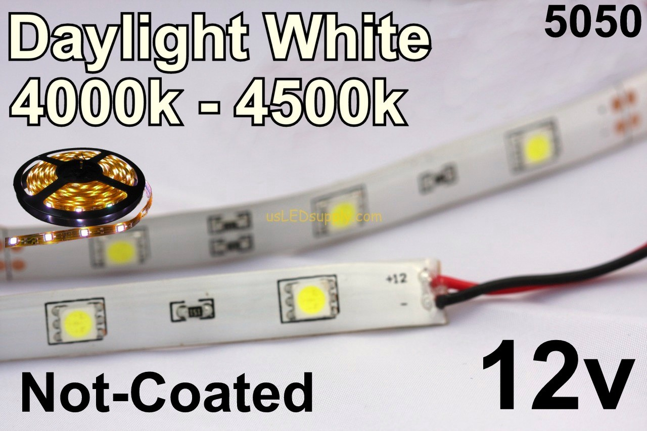 Flex Strip Daylight  White 5050 12v un-coated.jpg