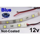 Flex Strip Blue 5050 12v un-coated.jpg