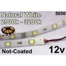 Flex Strip Natural White 5050 12v un-coated.jpg